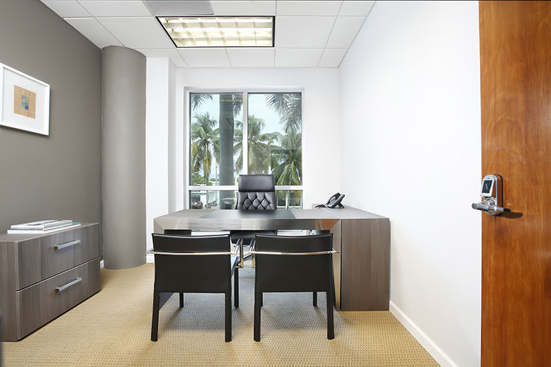 ANEX OFFICE - Executive Office with window