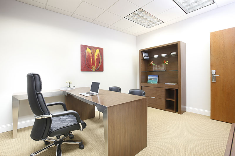 ANEX OFFICE - 2-person Executive Suite
